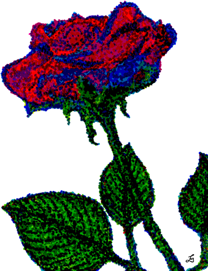 Pointillism rose