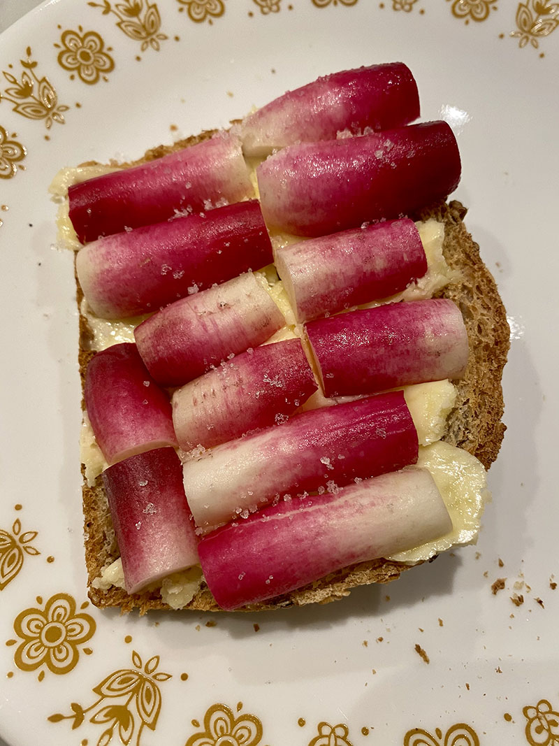 Photo of a piece of toast topped with butter, halved thin French breakfast radishes, and noticeable salt crystals on a plate