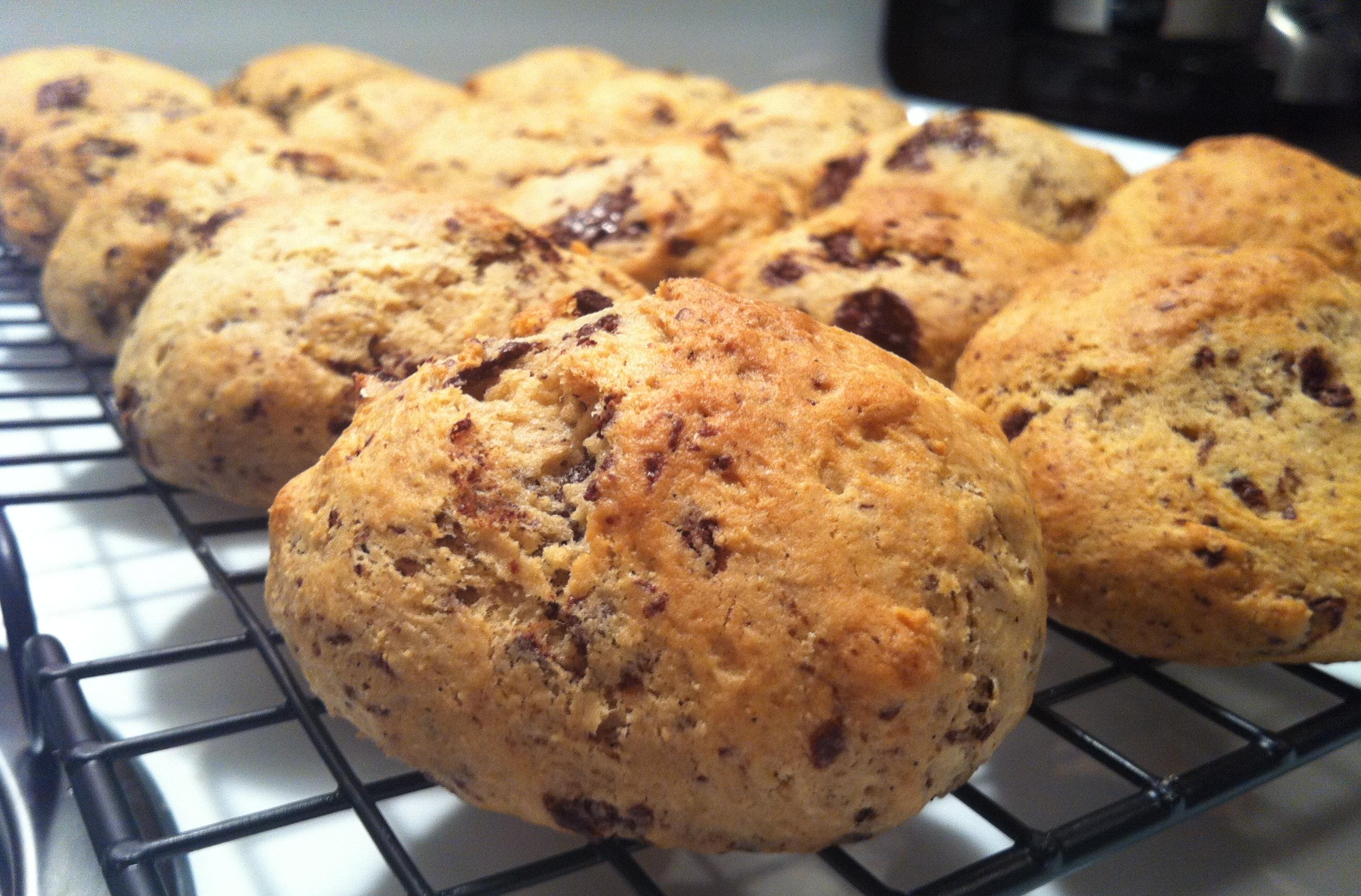 Ricotta chocolate shavings cookie cakes